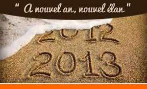 Je suis mes résolutions cette année , Résolutions 2013