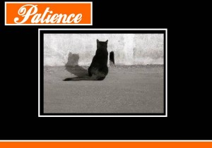 patience monbonpote.com