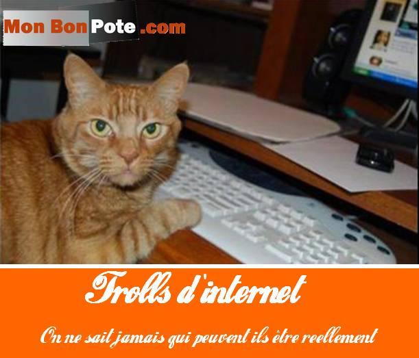 10 raisons d'être blogueur professionnel … ou pas, trolls internet facebook lol cat chat ordinateur raleurs, aigris, frustrés, susceptibles, grincheux, français culture négativisme négatif, blogueurs, je n'aime pas les blogs, blogging, pessimisme, positif changer de vie, bonne humeur, bonheur, être heureux