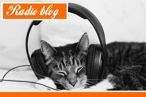 La radio des blogueurs de cet été
