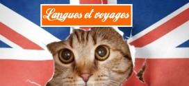 Apprendre l'anglais ou le cliché du Français ?