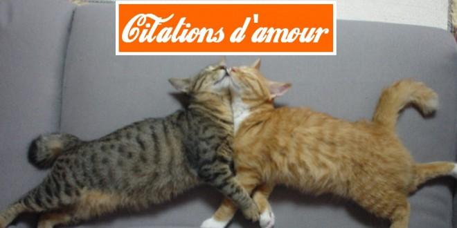 ... Célibat / Amour / Citations : Les 15 plus belles citations d'amour
