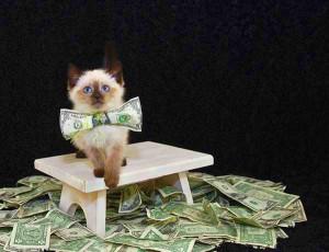 La folie de gagner de l'argent sur Internet