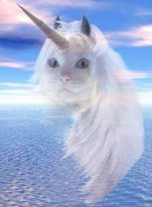 Vivre sa vie à moitié, chat licorne, lol cat, ne plus vivre sa vie à moitié