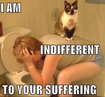 L'indifférence est le pire des mépris