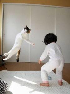 Comment être de bonne humeur, chat ninja, chat marrant, lol cat qui saut, lol cat qui joue, lol cat mignon