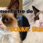 Chat prozac, lol cat prozac, comment être de bonne humeur, grumpy cat happy cat, chat heureux, chat en colère
