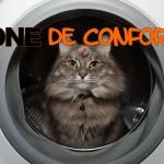 sortir de sa zone de confort, zone de confort, chat confort, lol cat machine à laver, zone de confort et confiance, citation zone de confort, citation zone de confort confiance,