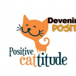 devenir positif, comment être positif, comment être de bonne humeur, devenir de bonne humeur, chat positif, lol cat positif, comment devenir positif et de bonne humeur, développement personnel, photo développement personnel