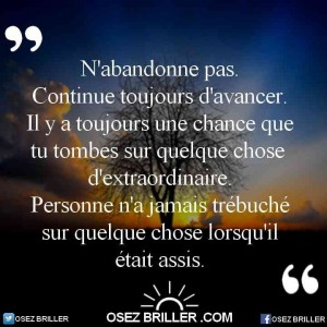 l'effet papillon, Citation n'abandonne pas, citation courage, citation abandonner, citation action, citation acte