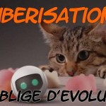 ubérisation, french tech, cat, uber chat, chat technologie, chat techno, lol, ubérisation évoluer, économie collaborative
