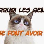 Grumpy cat, pourquoi les jeunes se font avoir ? Je me suis fait avoir, je me fais avoir, je suis trop gentil,