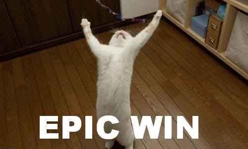 Chat gagne, chat vainqueur, Parier sur l'avenir