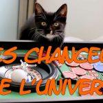 Gagner deux fois au loto, avoir de la chance, chance au jeu, changer de vie, chat voyageur, voyager et changer de vie