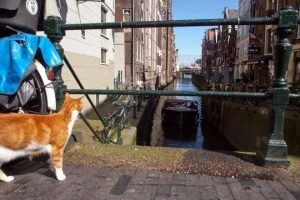 Un séjour à amsterdam