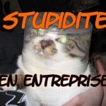 faut-il être stupide pour réussir en entreprise