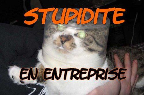 Faut-il être stupide pour réussir en entreprise ?
